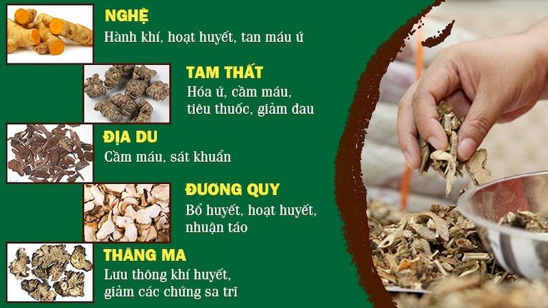 Một số loại thảo dược trong Thăng trĩ Dưỡng huyết thang