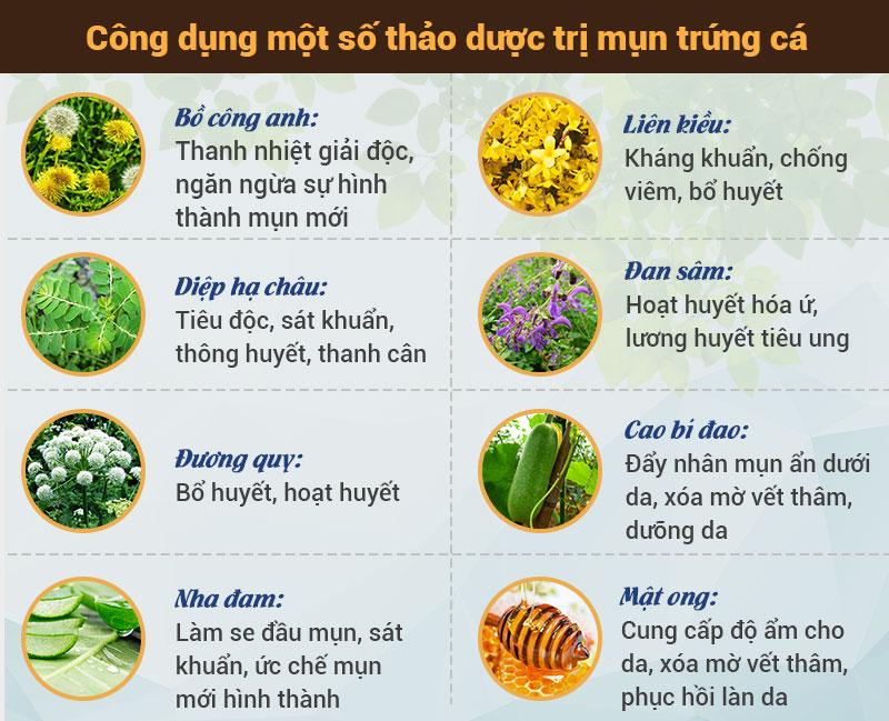 Một số thảo dược Đông y trị mụn hiệu quả