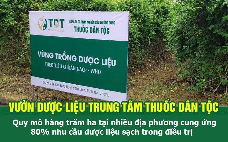 Vườn chuyên canh dược liệu sạch của Trung tâm Thuốc dân tộc
