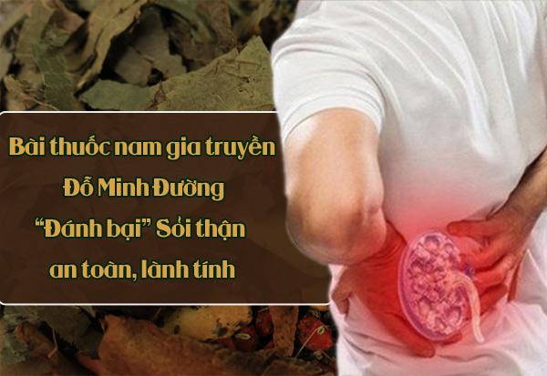 Bài thuốc nam Đỗ Minh Đường chữa sỏi thận hiệu quả, an toàn