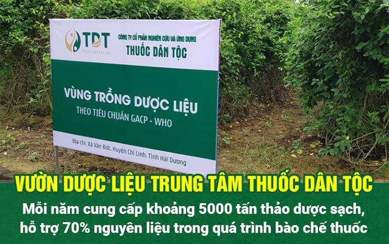 Vườn trồng dược liệu của Trung tâm Thuốc dân tộc đạt chuẩn GACP-WHO