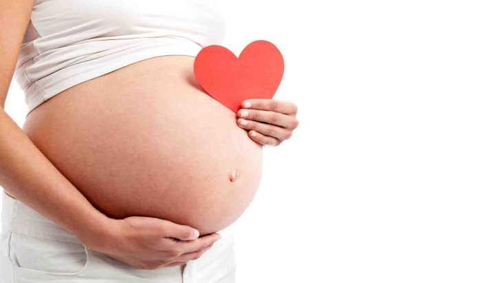 Không sử dụng cà gai leo trong quá trình mang bầu hoặc cho con bú