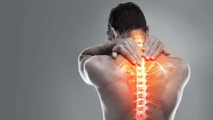 Thảo dược này có công dụng đặc biệt hiệu quả trong điều trị các bệnh xương khớp
