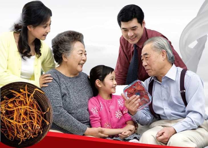Đông trùng hạ thảo giúp bổi bổ sức khỏe, gia tăng tuổi thọ cho người già