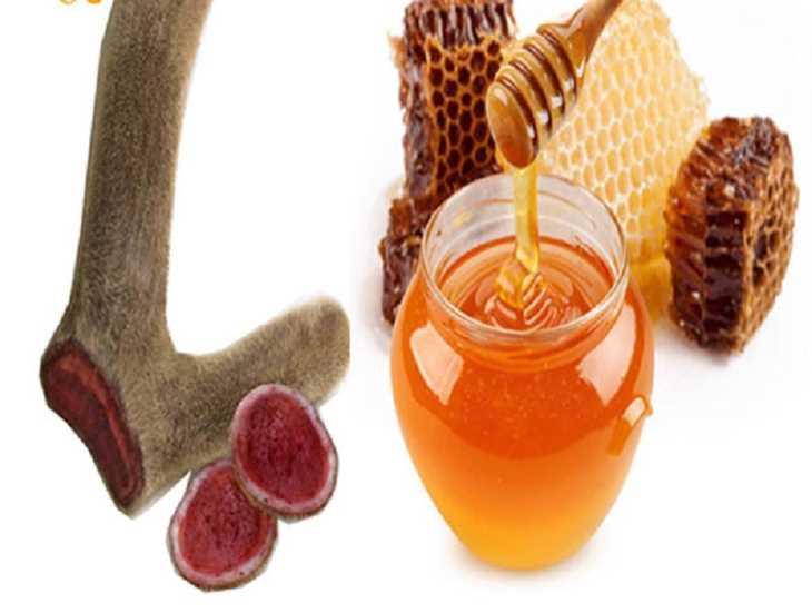 Mật ong ngâm với bột quan lộc nhung sẽ là món ăn bổ dưỡng, trị các bệnh liên quan