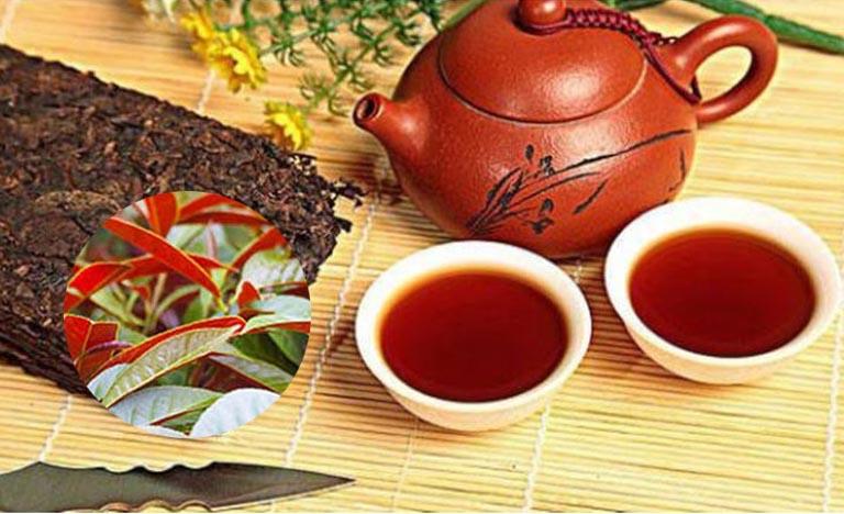 Uống trà lá đơn đỏ giúp cải thiện tình trạng bệnh mề đay