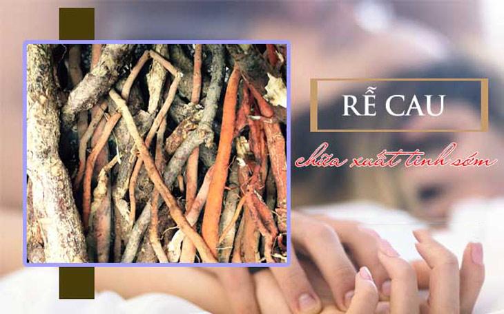 Sử dụng rễ cau giúp hỗ trợ điều trị bệnh hiệu quả