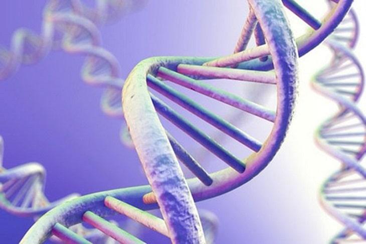 Di truyền là một trong những nguyên nhân gây bệnh được tìm thấy