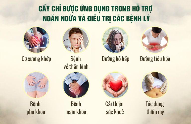 Cấy chỉ được ứng dụng điều trị nhiều đầu bệnh