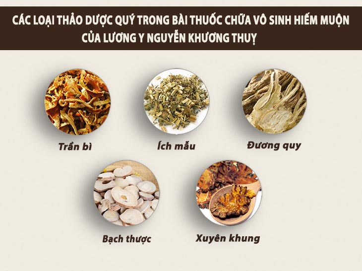 Sử dụng bài thuốc cổ phương được kế thừa và phát triển, gồm các vị thảo dược quý, chữa hiếm muộn từ căn nguyên là phương pháp của bác sĩ Nguyễn Khương Thụy