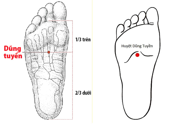 Hình ảnh huyệt dũng tuyền ở lòng bàn chân