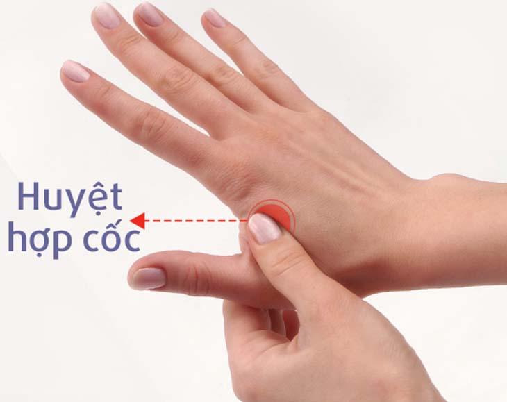Huyệt hợp cốc nằm trên mu bàn tay