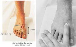 Huyệt thái xung: Vị trí, công năng và ứng dụng trong trị liệu