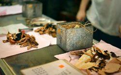 Xuyên khung trà điều tán: Bài thuốc trị đau đầu, ố hàn phát nhiệt cổ xưa