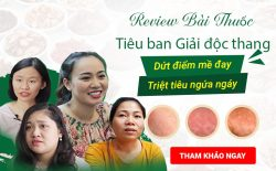 Review bài thuốc Tiêu ban Giải độc thang