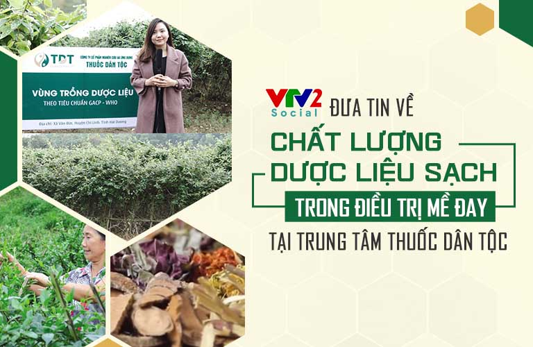 VTV2 đưa tin về hệ thống vườn thuốc Nam của Trung tâm Thuốc dân tộc