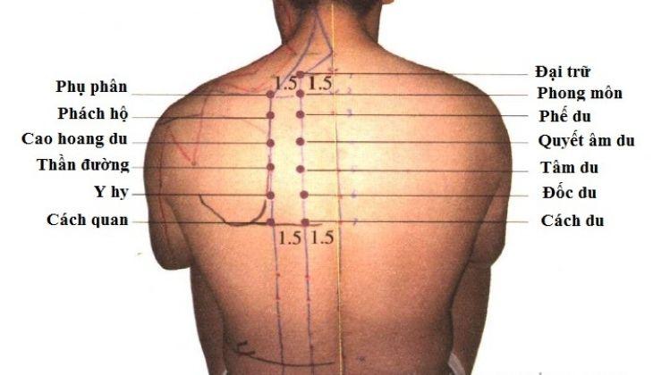 Huyệt có vị trí tương đối khó xác định trên cơ thể