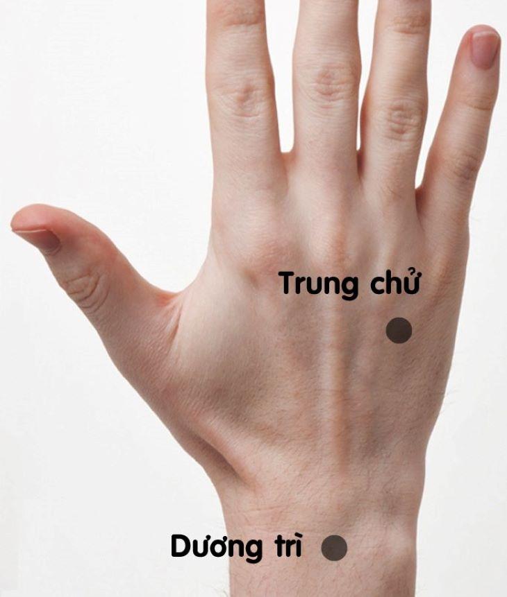 Hình ảnh huyệt Dương Trì