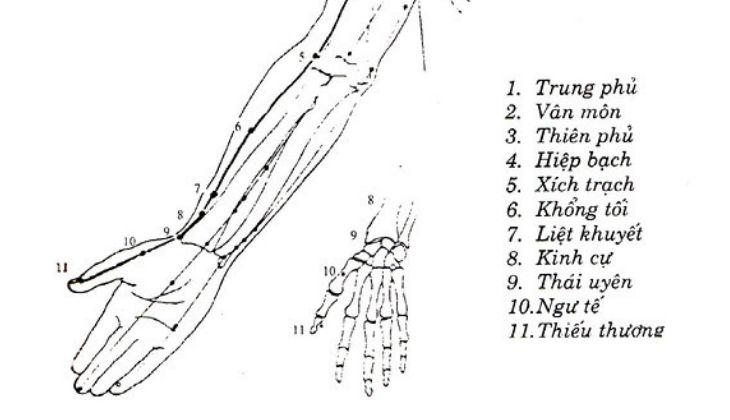 Huyệt có thể sử dụng phương pháp châm cứu hoặc day ấn