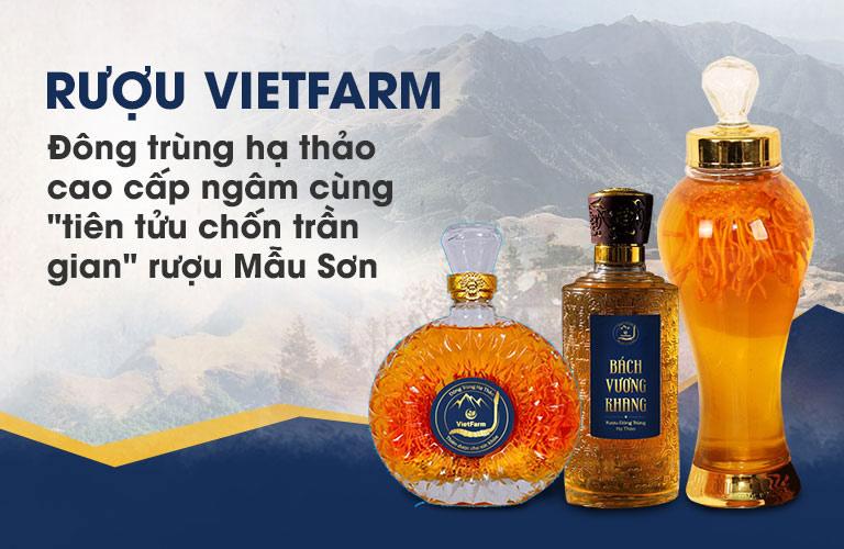 Rượu đông trùng hạ thảo Vietfarm được nghiên cứu bào chế từ những nguyên liệu thượng hạng nhất