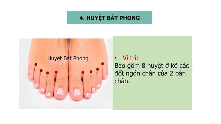 Huyệt Bát Phong nằm ở chi dưới khi tác động vào huyệt có thể chủ trị một số bệnh lý do phong tà gây ra