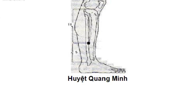 Huyệt Quang Minh giúp điều hòa khí huyết, đả thông kinh mạnh, nâng cao sức khỏe từ sâu bên trong