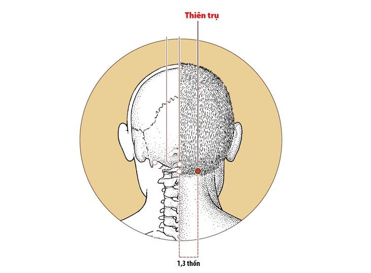 Huyệt nằm ở phía sau gáy, giữa tai và đầu cột sống