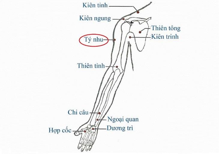 Huyệt nằm ở đầu cuối cơ tam giác cánh tay, trên đường nối giữa huyệt Khúc Trì và Kiên Trung