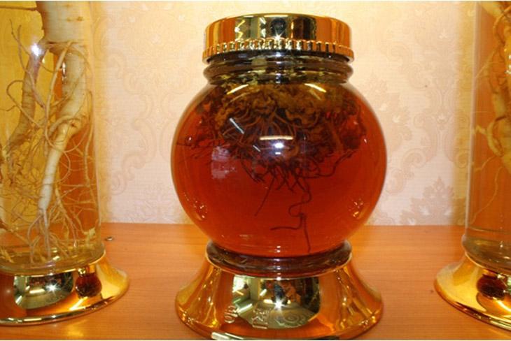Tác dụng của đông trùng hạ thảo ngâm mật ong đã được nghiên cứu kỹ lưỡng