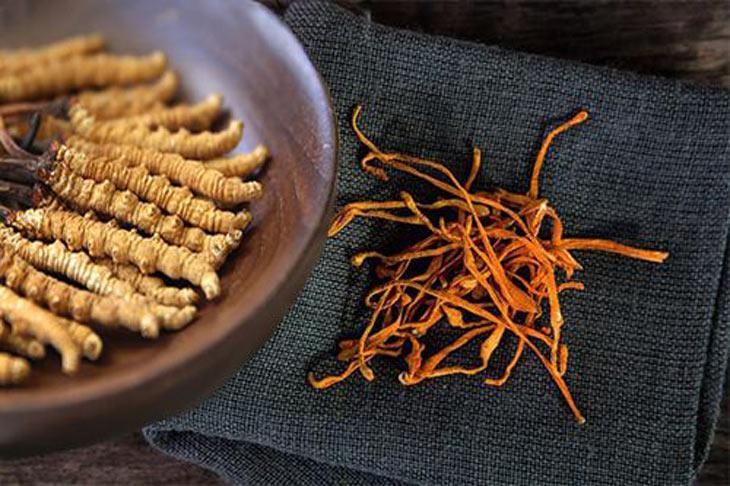 Sử dụng đông trùng hạ thảo khô cũng khá tiện lợi