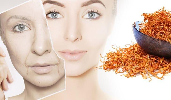 Các dưỡng chất có trong đông trùng giúp loại bỏ dấu hiệu lão hóa da từ sâu bên trong