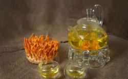 Sử dụng trà đông trùng hạ thảo có tốt không? Hướng dẫn cách pha trà ngon và bổ dưỡng nhất