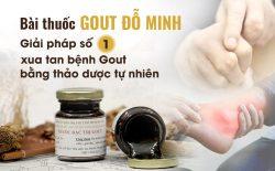 Bài thuốc gout Đỗ Minh được nhiều người lựa chọn để chữa trị và thành công