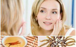 Kem đông trùng hạ thảo là gì? Top 7 sản phẩm tốt nhất hiện nay