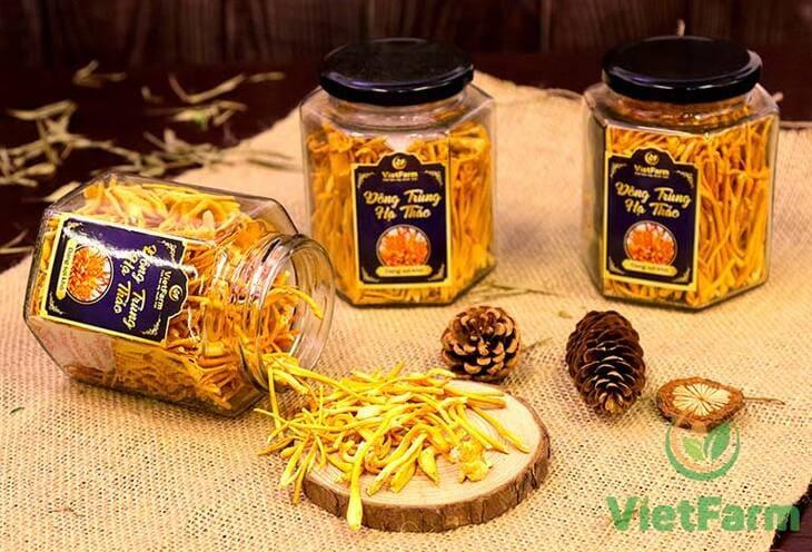 Đông trùng của Vietfarm có được hàm lượng dưỡng chất cao nhất tiệm cận với đông trùng tự nhiên