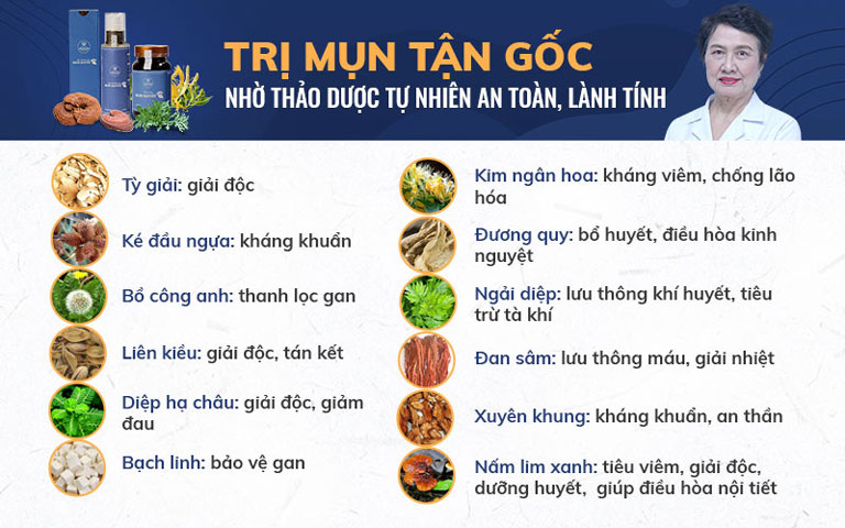 Công dụng của các loại thảo dược có trong Bộ sản phẩm Mụn trứng cá Hoàn Nguyên