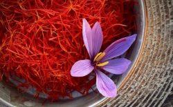 Saffron [Nhụy hoa nghệ tây] - Công dụng, cách dùng, giá bán chi tiết và địa chỉ mua uy tín