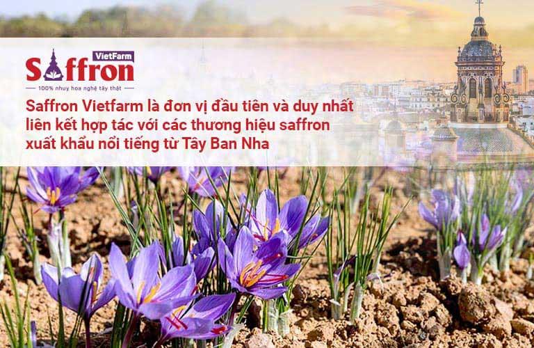 Saffron Vietfarm - Đơn vị nhập khẩu và phân phối Saffron Tây Ban Nha