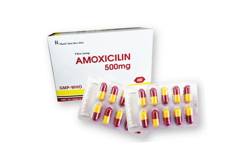 Amoxicillin được sử dụng điều trị vi khuẩn hp