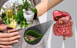 Các biện pháp chữa sỏi mật tại nhà được nhiều người áp dụng