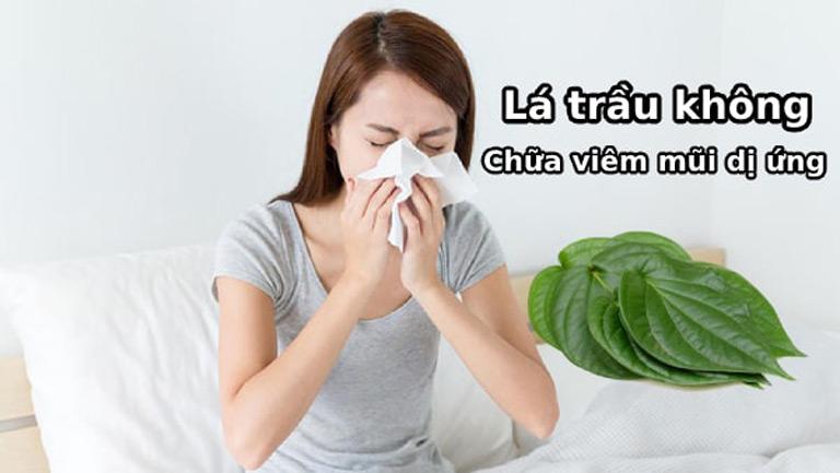Dùng lá trầu không chữa viêm mũi dị ứng