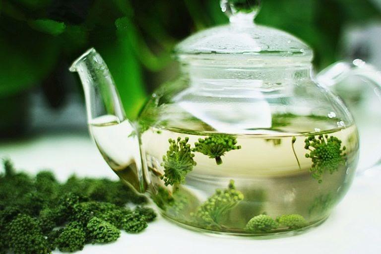 Hoa taHoa tam thất bắc được sử dụng nhiều trong bài thuốc chữa mất ngủm thất bắc được sử dụng nhiều trong bài thuốc chữa mất ngủHoa tam thất bắc được sử dụng nhiều trong bài thuốc chữa mất ngủ