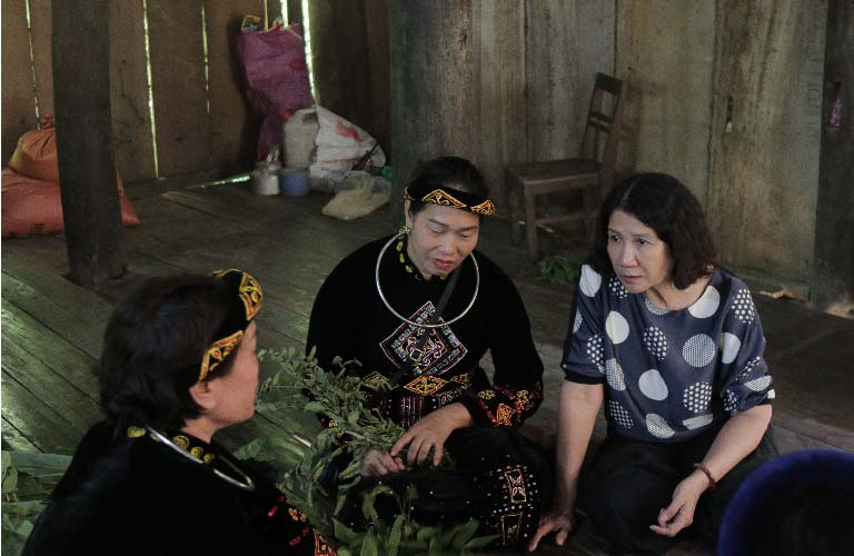 Hình ảnh đội ngũ bác sĩ Thuốc dân tộc lên vùng núi phía Bắc tìm cây thuốc quý