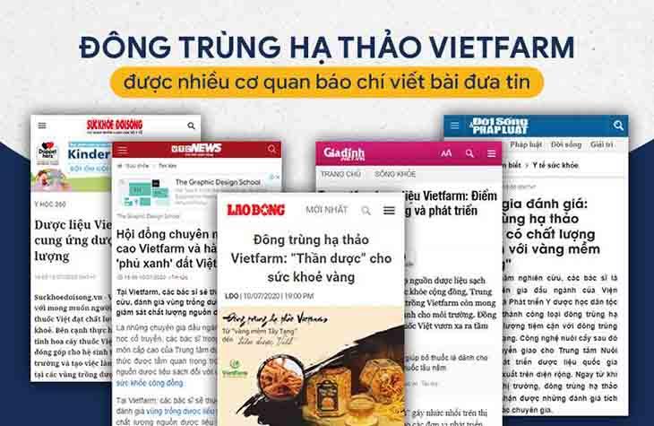 Các trang báo đưa tin về Đông trùng hạ thảo Vietfarm